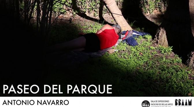 EXPOSICION DE ANTONIO NAVARRO